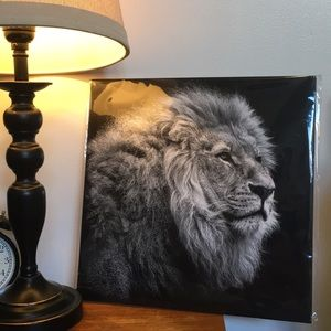 NWT Lion 🦁 Black & White Art Print from Chapters